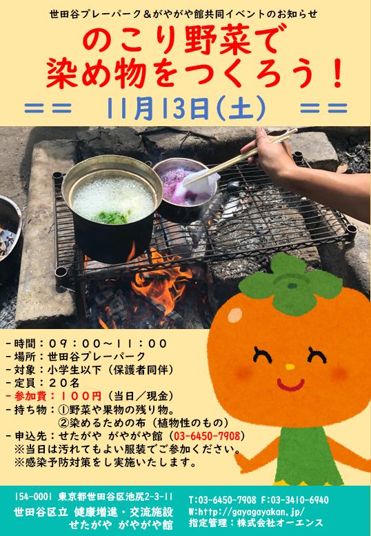 イベント 残り野菜で染め物をつくろう。